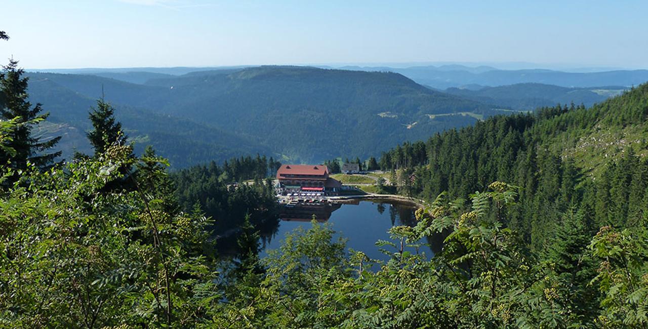 30 Min. Tragschrauber Rundflug in Eschbach