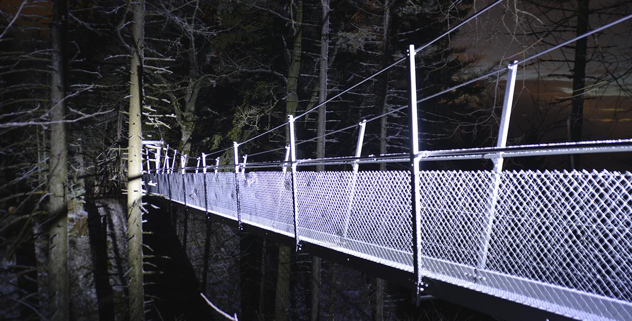 Nachtwanderung am Feldberg, 7-10 Personen
