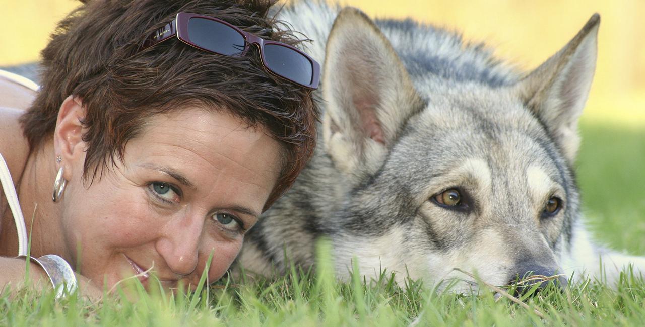 Hunde Fotoshooting Bremen