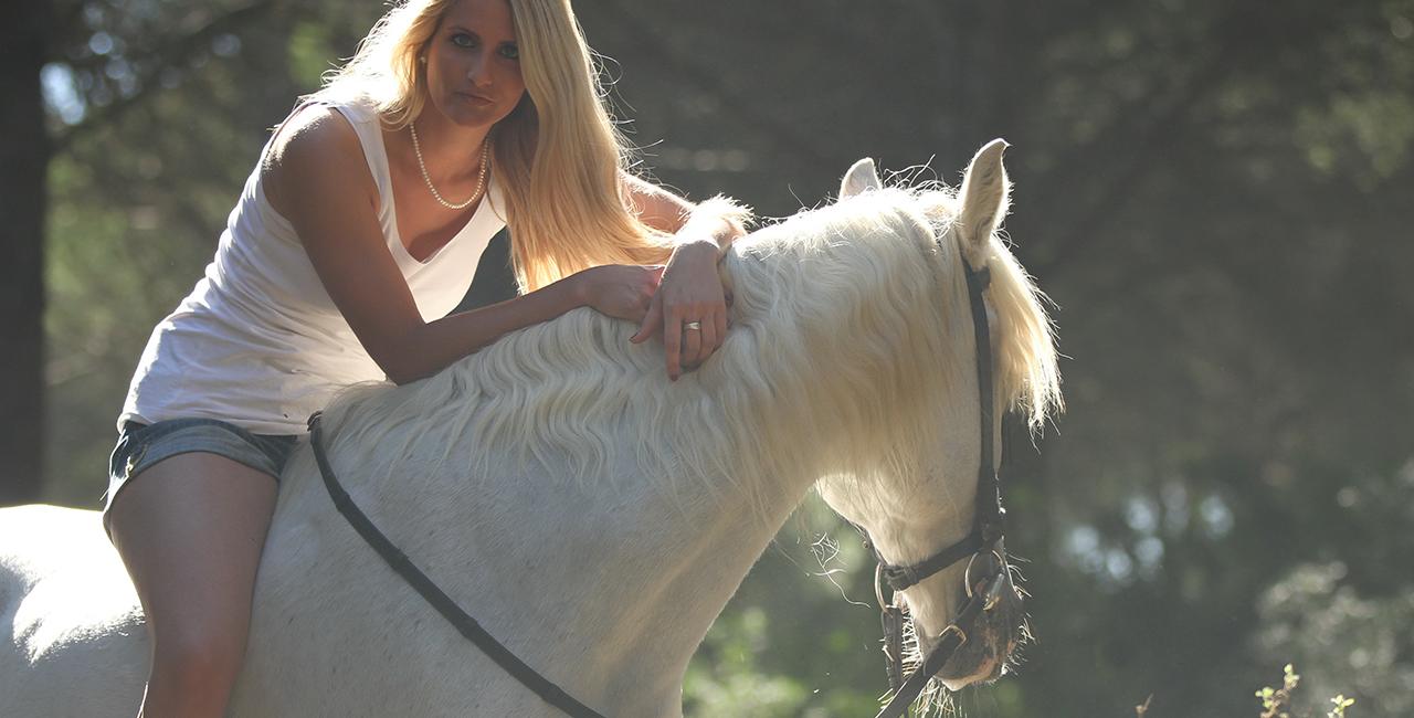 Pferde Fotoshooting in München, Bayern