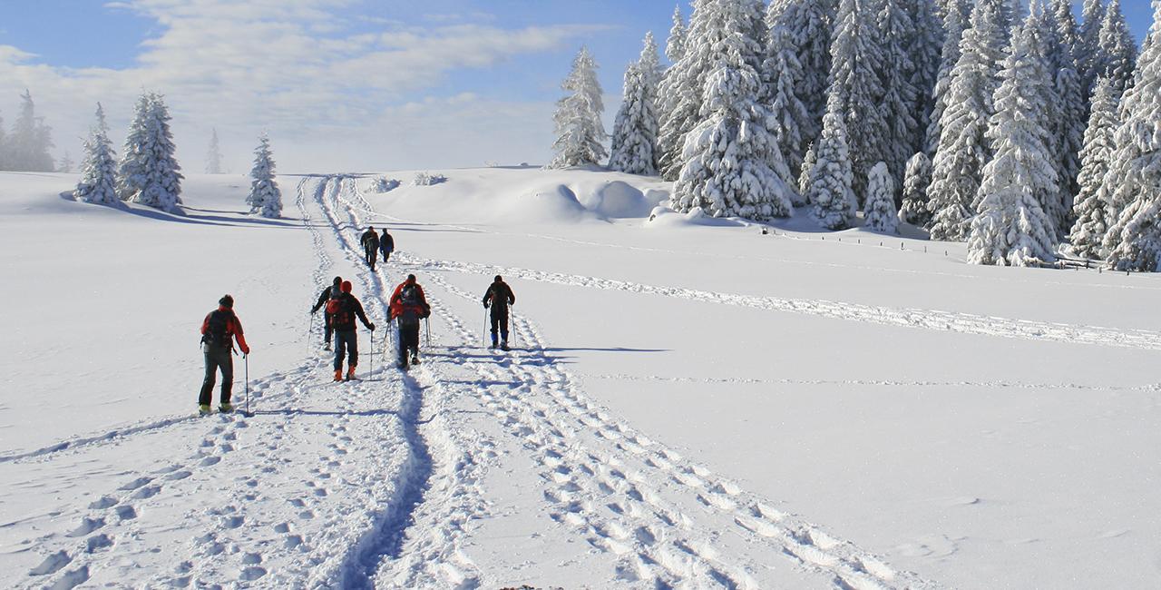 Schneeschuh Wanderung in Blaichach, Raum Kempten in Bayern