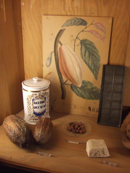 Kakao-Frucht, Kakaobohnen